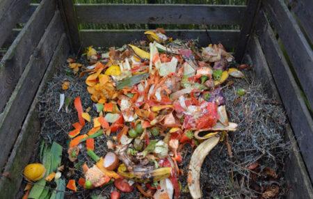 Deseuri biodegradabile2