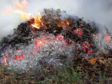 arderea deseurilor
