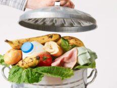 risipa alimentara