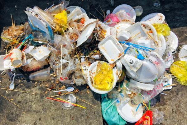consecinte plastic unica folosinta