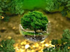green esg environmental investing tree