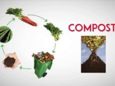 compost bio deseuri