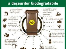 biodeseuri