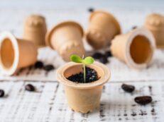 capsule cafea biodegadabile