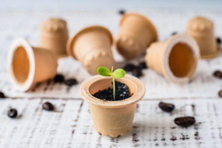 Capsule cafea biodegradabile